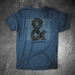 Invest, Affirm & Mobilize - Text  in Text